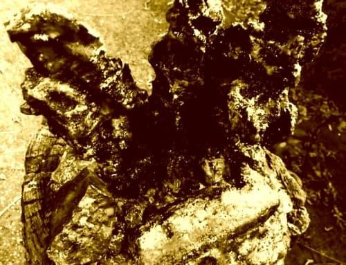 Eagle that Tormented Prometheus